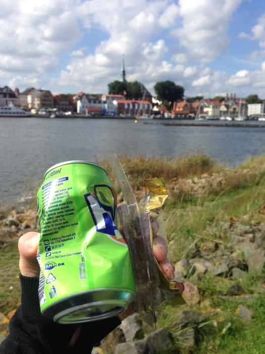 can and plastic at the shore